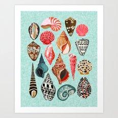 Seashells ocean nautical beach seaside children kids baby home dec shell illustration Andrea Lauren  Art Print