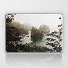 Cape Flattery Laptop & iPad Skin