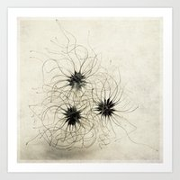 three weeds Art Print