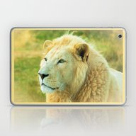 LION AROUND Laptop & iPad Skin
