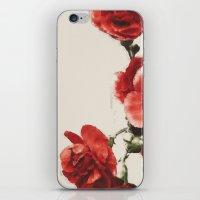 Love Petals iPhone & iPod Skin