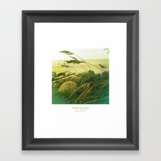 Beach Grass - Fripp Island, South Carolina Framed Art Print
