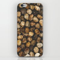River Stones iPhone & iPod Skin