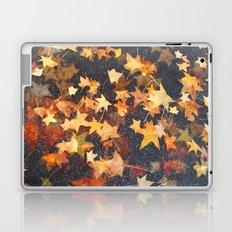 Earth Stars Laptop & iPad Skin