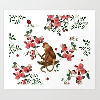 Monkey World: Nosy - White Art Print