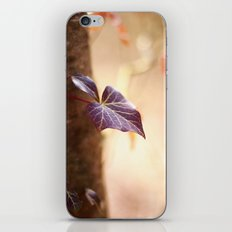 Enchanted Ivy iPhone & iPod Skin