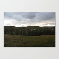 What's In Your Backyard? Canvas Print