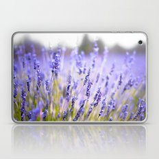 Lavenders Laptop & iPad Skin