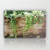 Wall Laptop & iPad Skin