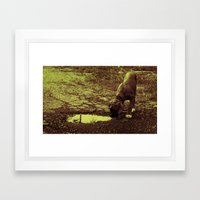 Odie Framed Art Print