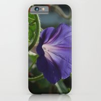 Morning Glory iPhone 6 Slim Case