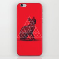 Sacred Sphynx iPhone & iPod Skin