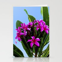 Pink Plumeria Stationery Cards