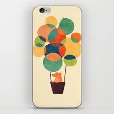 Whimsical Hot Air Balloon iPhone & iPod Skin