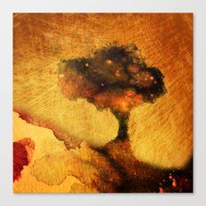 Evening Glory Canvas Print