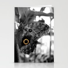Owl Butterfly Stationery Cards