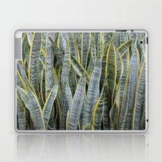 Snake Plants Laptop & iPad Skin