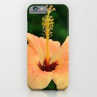 Peach Hibiscus iPhone 6 Slim Case