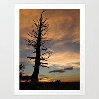 Witching Hour Art Print