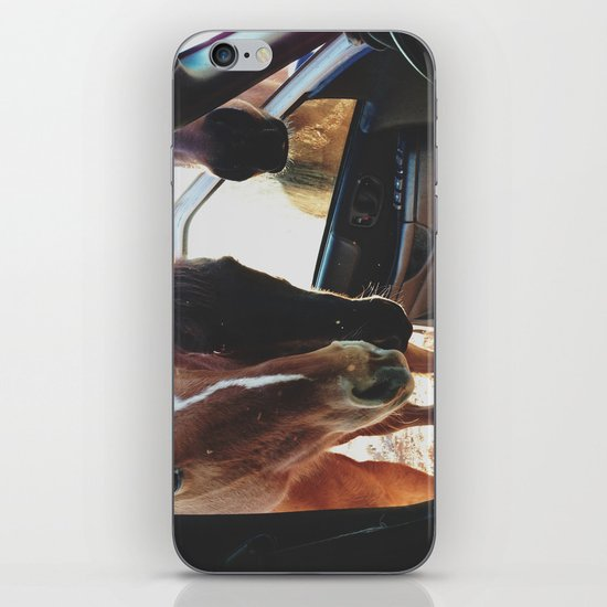 Car Horses iPhone & iPod Skin