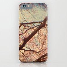 Dream of Me iPhone 6 Slim Case