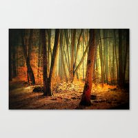 Morgenstimmung Canvas Print