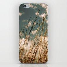 Golden Wheat iPhone & iPod Skin