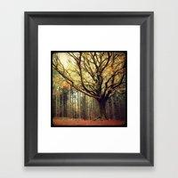 Hêtre De Ponthus 02 - L… Framed Art Print