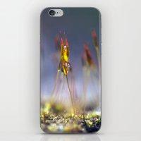 Capillary Thread Moss 74… iPhone & iPod Skin