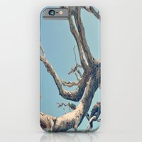 iPhone & iPod Case featuring Driftwood Ladder by Danielle W