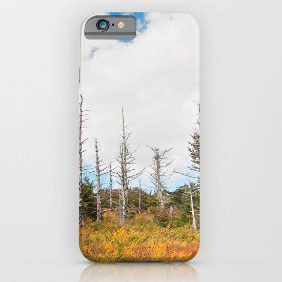 Trees in Mt. Rogers, Virginia iPhone & iPod Case