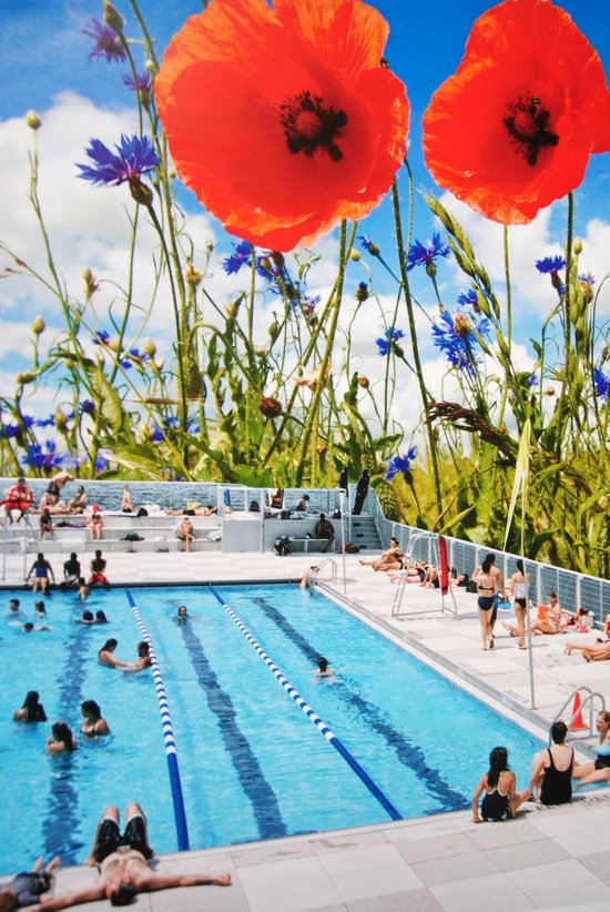 Poppy Pool Art Print