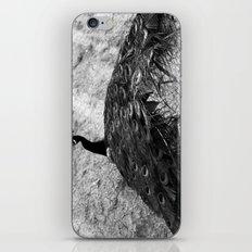 Show Off BW iPhone & iPod Skin