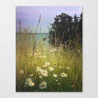 Summer Solstice Canvas Print