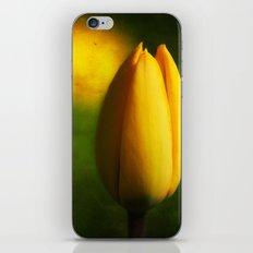Tulip Hallucinations iPhone & iPod Skin