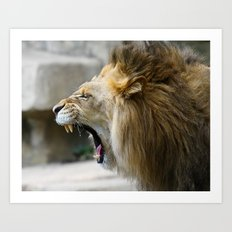 Lion Roar  Art Print