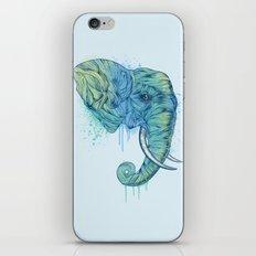 Elephant Portrait iPhone & iPod Skin