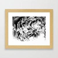 Black and White Dried Peony Framed Art Print