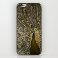 Golden Peacock iPhone & iPod Skin