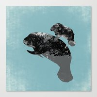 Manatee Mother And Baby  Canvas Print
