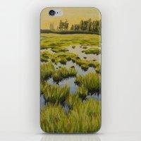Maine Marsh 2 iPhone & iPod Skin