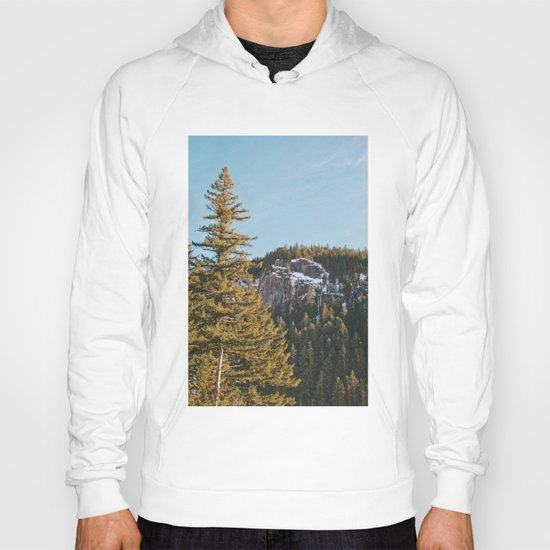 Trees in the Mountains Hoody