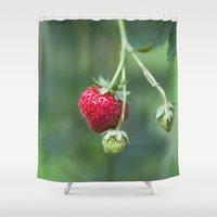 Red Ripe Strawberry Shower Curtain