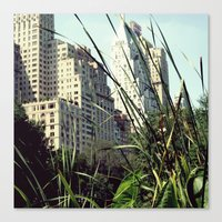 Central Park View Canvas Print
