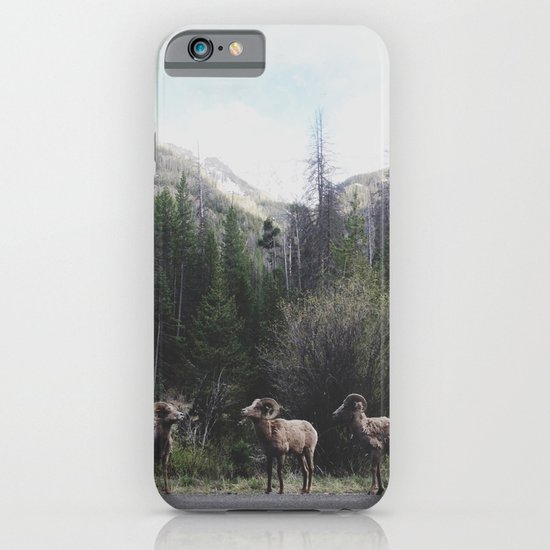 Bighorn Sheep iPhone & iPod Case