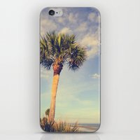 Palm Tree Paradise iPhone & iPod Skin