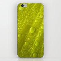 water drops petal IV iPhone & iPod Skin