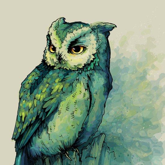 Green Owl Canvas Print