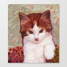 Copper kitten Canvas Print
