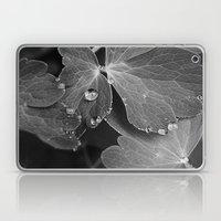 Black & White Spring  Laptop & iPad Skin